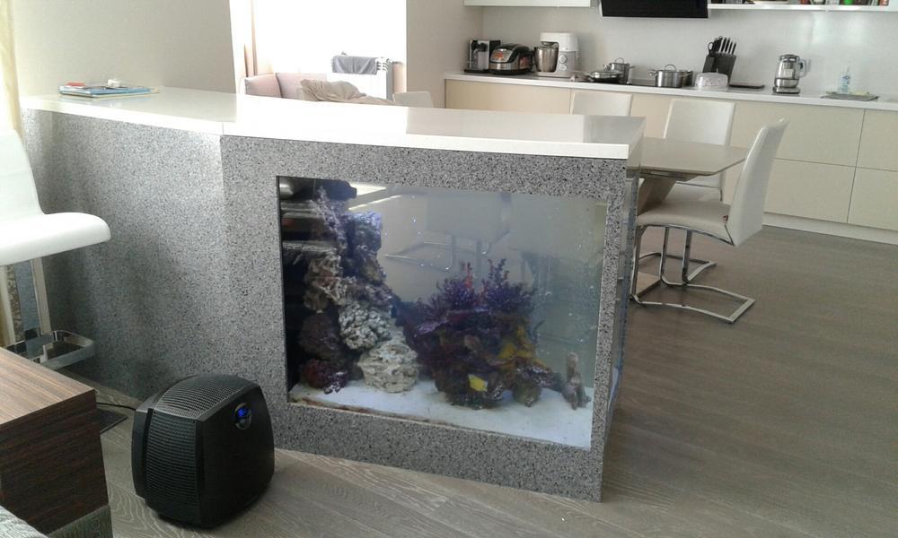 Креативный дизайн обеденной зоны с аквариумом